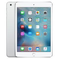 iPad: APPLE APPL -TAB-100